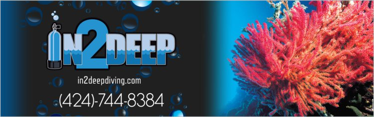 In 2 Deep Logo