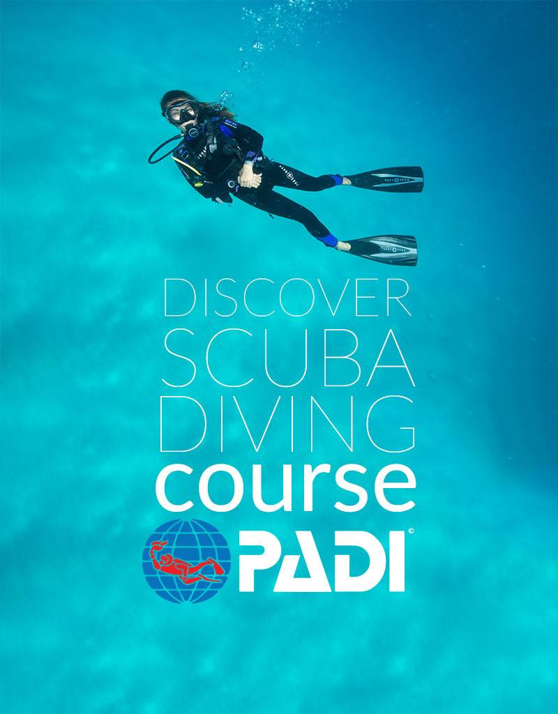Photo of PADI Discover Scuba Diving Program: diving course.