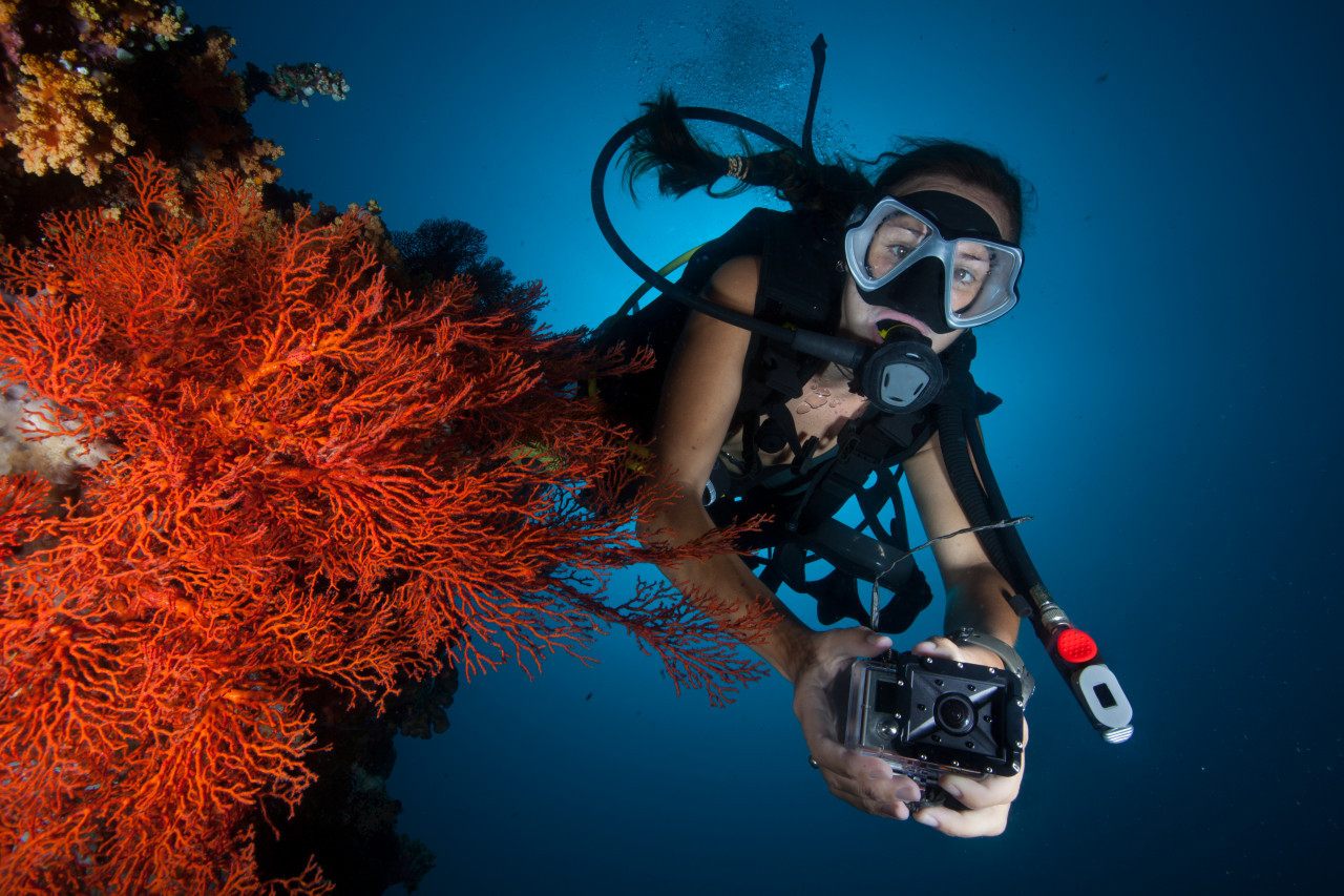 Photo of Digital Underwater Photography diving course.
