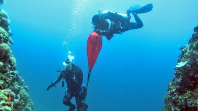 Photo of Search and Recovery Diver diving course.