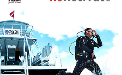 Photo of Reactivate diving course.